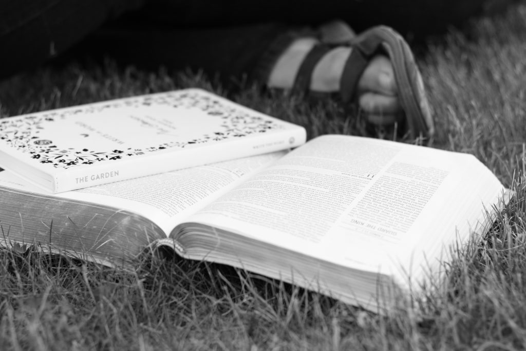 bible and journal grass black and white